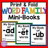 CVC Word Family Books