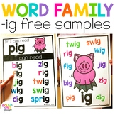 Word Family Posters and Worksheets | ig family
