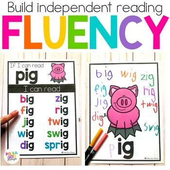 Word Family Posters for Short and Long Vowels