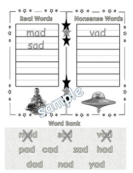 Word Family Real or Nonsense Word Sort