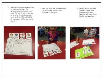 Word Family Sort (with Teacher Manipulatives)