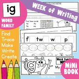 Word Family Activities for the Week - ig Words