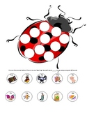Word Final /G/ Lady Bug Activity