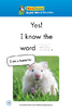 Sight Word Stories Mini Books: What Is This?