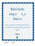 Word Hunt Long A silent e vs Short A