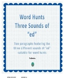 """Word Hunt Three Sounds of """"ed"""""""