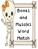 Word Match Worksheets-Human Body (Skeletal System, Muscula