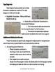 Word Problem Dry Erase Mats