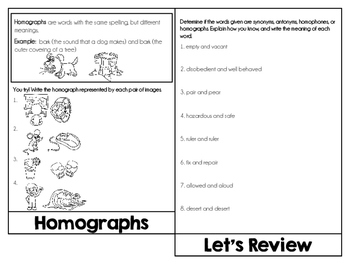 Word Relationships Flipbook (Synonyms, Antonyms, Homophones, and Homographs)