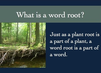 Word Roots Powerpoint for Elementary Students