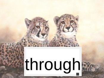 Word Safari Sight Words 2nd Gr Set B