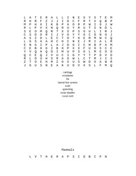 Word Search Collection for Biology II