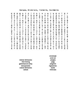 Word Search Covering Sponges, Flatworms, and Roundworms For Biology II
