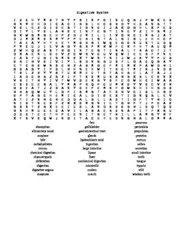 Word Search Covering the Digestive System for Anatomy