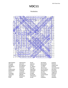 Word Search Puzzle (Vocabulary) 11 Answers