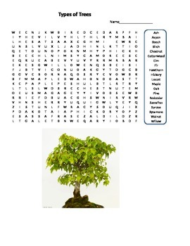 Word Search - Types of Trees Grades 5-9