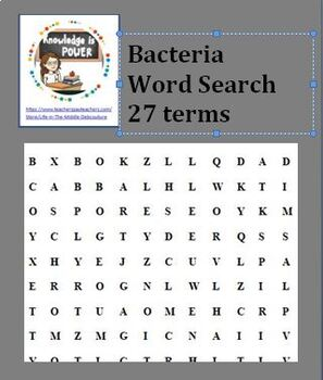 Word Serach Bundle