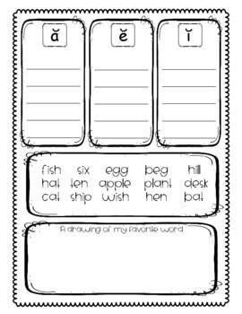 Word Sort Mini-Lesson