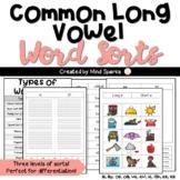 Word Sort Pack: Common Long Vowel Teams