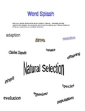 Word Splash! Biology-Natural Selection