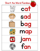 Word Study Classroom Posters
