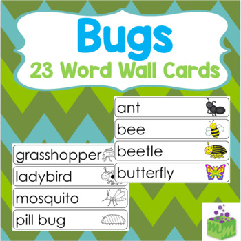 Insects Bugs Word Wall