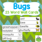 Insects Bugs Word Wall Cards