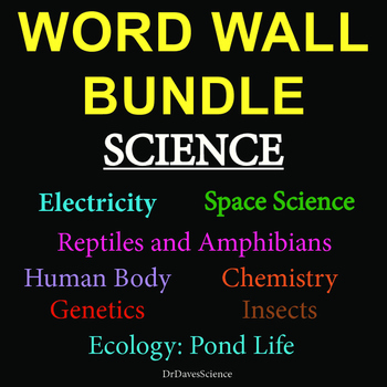 Word Wall Bundle