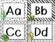 Word Wall - Cactus - Succulent Themed - Classroom Decor