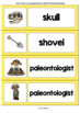 Word Wall Cards with Pictures: Paleontology
