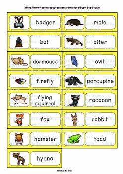Word Wall Cards with Pictures for ESL Kids and Young Learners:Nocturnal Animals
