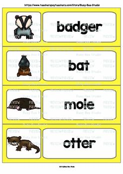 Word Wall Cards with Pictures for ESL Kids and Young Learners: Nocturnal Animals