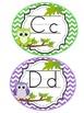 Word Wall Headers Bright Owl Chevron (blue, pink, green, p