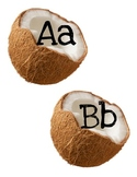 Word Wall Letters Coconuts
