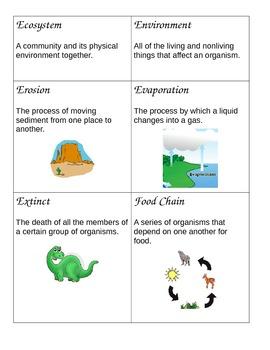 Word Wall Science Vocabulary grades 3-5