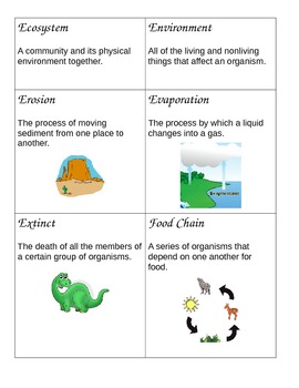 Word Wall Science Vocabulary grades 3-5
