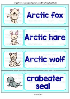 Word Wall Words with Pictures: Arctic Animals
