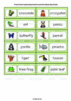 Word Wall Words with Pictures: Rainforest Animals