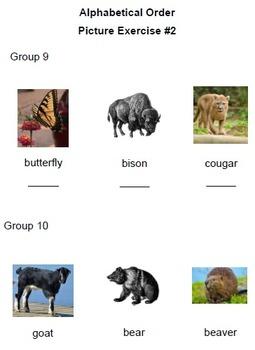 Word Watching At The Zoo: Alphabetizing Workbook