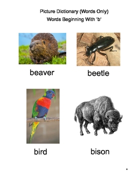 Word Watching at the Zoo: Initial Consonants B, C, D, F, and G