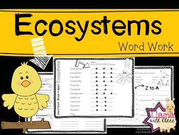 Ecosystems Academic Word Work