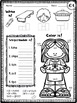 CVC Word Families No Prep Packets Bundle