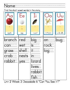 """Word Work- Treasures First Grade Unit 2 Week 3 Decodable 6 """"Can You See It"""""""