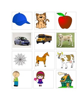 Word to Picture Match, ABLLS, ABA, Autism