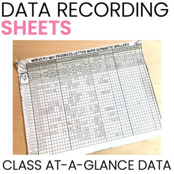 Words Their Way Data Charts {Melonheadz}