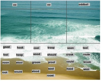 Words Their Way Within Word Pattern sorts 1-50