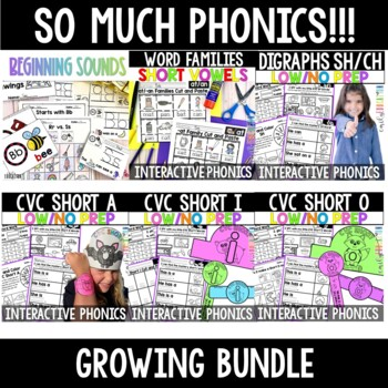 Words Their Way for Letter Name Alphabetic Spellers Units 1-3 BUNDLE