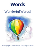 Words Wonderful Words -  Flashcards and Categorisation