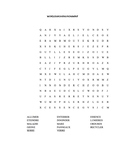 Wordsearch Environment