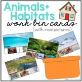 Work Bin Task Cards - Animal Habitats (72 cards with 4 levels)